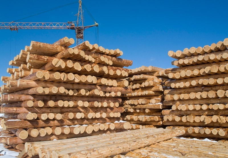 подготовка леса к транспортировки