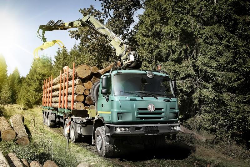Готовую лес везут на сушку и переработку