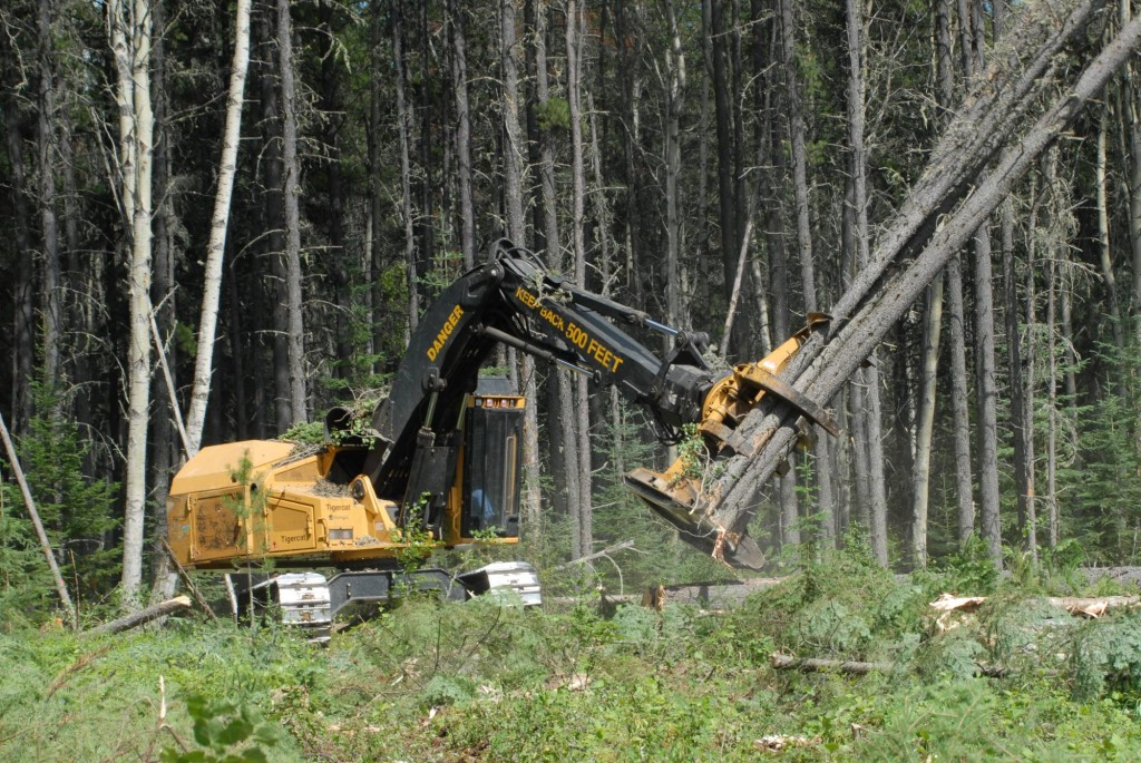 форватер для лесопогрузки
