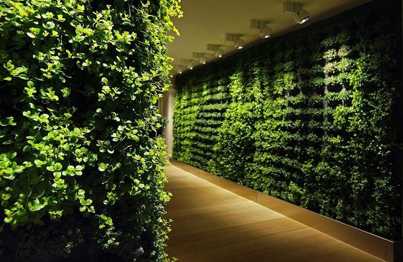 Зеленая стена от Greenwork