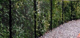 Как защитить сетку-рабицу от ржавчины