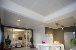 Двухуровневый панельный потолок