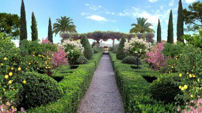 Разнообразие растений в итальянском саду